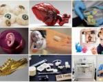 دستاوردهای 2013 در فناوری چاپ سهبعدی