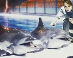 عکس/ بازیگر زن در کنار دلفینهای برج میلاد