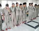 دستگیری ۲۰ دزد شب در تهران