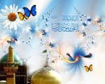 دلیل «رضا» لقب گرفتن امام هشتم چیست؟