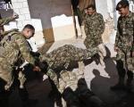 وقتی سرباز افغانی،هالتر آمریکایی ها میشود