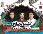 هنرمندان ایران زمین با حمایت چینی زرین ایران شیپور صلح را می دمند