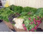 عکس: سبزی خوردن