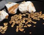 کشف فرایند کیمیاگری/ حشرهای که تخم طلا میگذارد