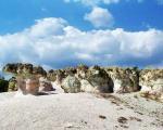 برگترین قارچ سنگی دنیا
