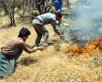 بالگرد پیشکش؛ آیا به اندازه کافی بیل برای مهار آتش داریم؟!