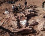 کشف فسیل بزرگترین دایناسور + تصاویر