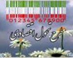 14درصد تهرانی ها برای هدفمندی یارانه ها ثبت نام نکردند