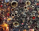 تصاویر زیبا از ترکیب مایعات حین آشپزی