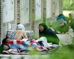 کارتنخوابی خانوادگی در پایتخت