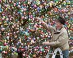 تزئین درخت عید پاک با ۹۳۰۰ تخم مرغ