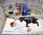 پسر مبتلا به اوتیسم و سگ وفادارش +عکس