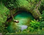 لذت شنا در استخری در دل طبیعت+عکس