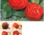 تزیین چغندر به شکل گل رز