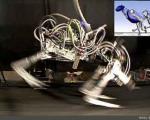 شكست ركورد سریعترین انسان زمین توسط یوزپلنگ روباتیك