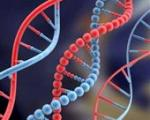 کشف ژن اطاعت