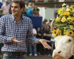 راجر فدرر «گاو» ۳ ساله جایزه گرفت!