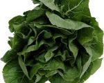 سبزی مفید برای جلوگیری از نقایص جنین