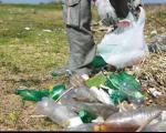كشف نوعی قارچ پلاستیكخوار نجاتدهنده محیط زیست