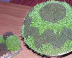 روش کاشت سبزه دورنگ عید در کمترین زمان