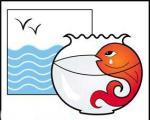 روش نگهداری از ماهی قرمز خانگی