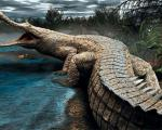از انقراض این حیوانات خوشحال هستیم!