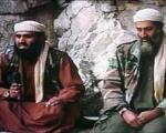 داماد بن لادن در ایران بوده است!