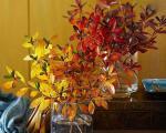 دکور پاییزی خانه با عناصر طبیعی