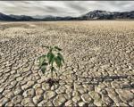 تصویر باران جامد برای رونق کشاورزی در مناطق خشک و کم آب