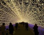 تونل روشنایی ژاپن+عکس
