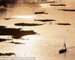 قتل فجیع ناموسی در هندمرد