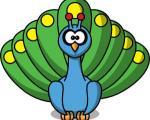 قصه زیبای دم طاووس