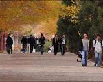 100 درصد پذیرش دانشجو در لیسانس پیام نور بدون کنکور شد