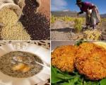 آیا گیاه کینوا را می شناسید