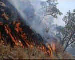 آتش سوزی پارک ملی گلستان مهار شد
