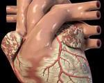 استعمال دخانیات عامل حملات حاد قلبی