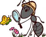 دوستی گیاهان گوشتخوار با مورچههای محافظ!