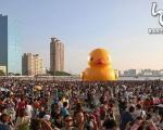 اردک عظیم الجثه تایوان را تسخیر کرد +عکس