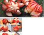 تزیین تربچه به شکل گل بگونیا