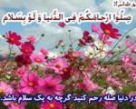 موجبات قطع رحم در كلام امام رضا علیه سلام