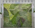 دیوارهای زنده و جاندار یک فرودگاه +عکس