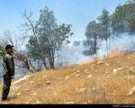 آتش سوزی وسیع در جنگلهای زاگرس ایلام