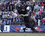 تصاویر بکر از هنر اسب سواری در فستیوال کرئولی در مونته ویدئو