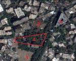 تخریب باغ پسیان در خیابان ولیعصر +تصاویر