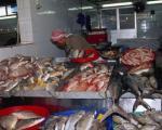 چگونه ماهی تازه را تشخیص دهیم ؟