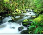 هفت چشمه ياسوج مکانی زیبا برای تفریح