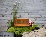 باغبانی برای چاله ها +تصاویر