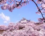 10 نکته یادگرفتنی از ژاپن