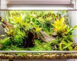 گلخانهای هوشمند برای نگهداری حیوانات و گیاهان + تصاویر