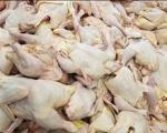 شیطنت مرغداران مرغ را گران کرد